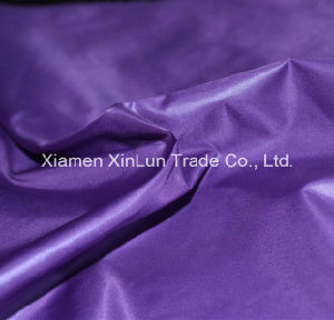 High Quality Nylon Fabric for Tent/Bag/Garment pictures & photos