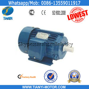 Fujian Tianyi AC Electric Motor for Your Country pictures & photos