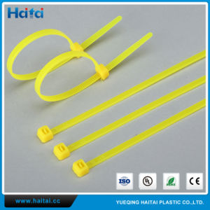 Free Sample 10′′nylon Cable Tie pictures & photos