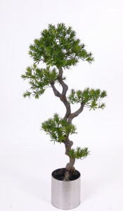 Artificial Plants of Plastic Trunk Ficus Tree pictures & photos