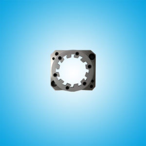 Wire Cut Die with Dentation Hole (High Precision Molding Assembly) pictures & photos