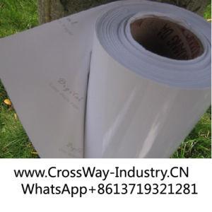Rolls Photo Paper for Indoor Waterbased Ink Printing Media