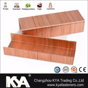 15ga 3515 Copper Carton Closing Staples for Packaging pictures & photos