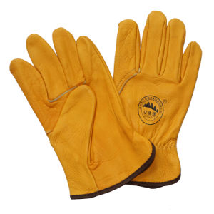Ab Grade Cow Grain Leather Driving Work Glove pictures & photos