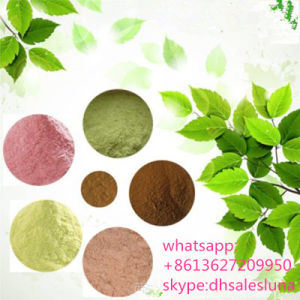 Factory Provide Field Pennycress Extract Powder pictures & photos