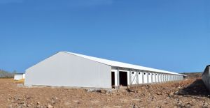 Fast Build Chicken Farm Building with Poultry Equipment pictures & photos