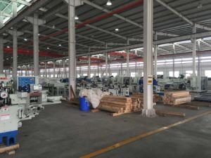 European Standard CNC Devetail Joints Machine for Devetail Joints, Straight Motise&Tenon Joints pictures & photos