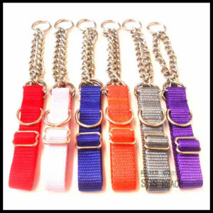 Half Choke Chain Dog Collar with Nylon Webbing pictures & photos