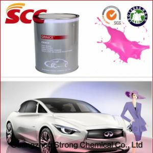 Color Could Change Chameleo Car Paint pictures & photos