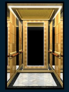 Volkslift Passenger Elevator Lift with Mirror Goden pictures & photos
