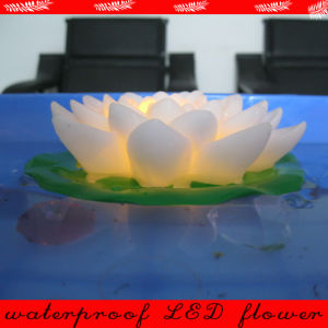 Beautiful Plastic Floating LED Lotus Flower Light for Outside pictures & photos