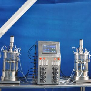 40 Liters Cells Bioreactor (glass) pictures & photos