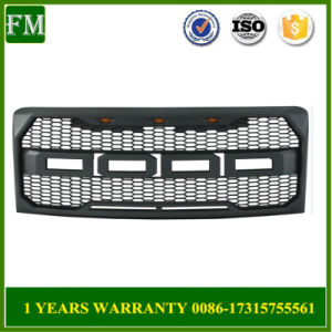 Plastic Mesh Grille Fits 2009-2014 F-150 pictures & photos