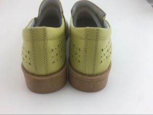 Latest Design Lady Leather Shoes Leisure Leather Shoes Kitten Heels Shoes for Lady (FW-1) pictures & photos