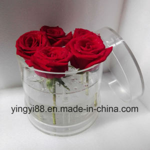 Factory Direct Sale Acrylic Flower Box, No Leaking pictures & photos