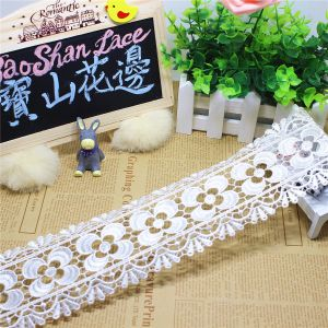 Stock Wholesale 8.5cm Width Embroidery Nylon Lace Polyester Embroidery Trimming Fancy Lace for Garments Accessory & Home Textile & Curtain pictures & photos