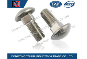 Ansib18.5 Stainless Steel Round Head Bolt with Square Neck pictures & photos