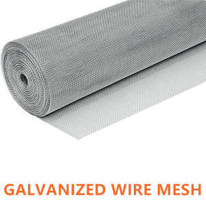 Manufacturer of Galvanized Plain Steel Wire Mesh for Filtre pictures & photos