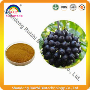 100% Pure 0.8% Eleutherosides Siberian Ginseng P. E. pictures & photos