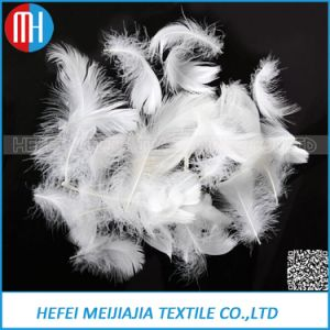 2-4cm Washed White Duck/Goose Feather Filling for Home Textile pictures & photos