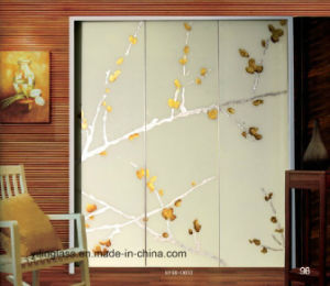 Color Pattern Printed Door Glass for Closet pictures & photos