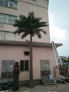 Factory Export High Quality Fiberglass Palm Tree for Gardening pictures & photos