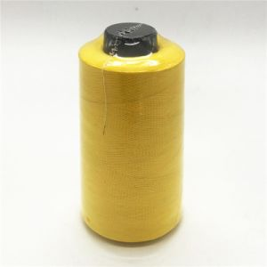 100% Polyester Textured Yarn 150d/1 300g pictures & photos