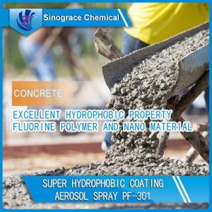 Super Hydrophobic Coating Aerosol Spray (PF-301) pictures & photos