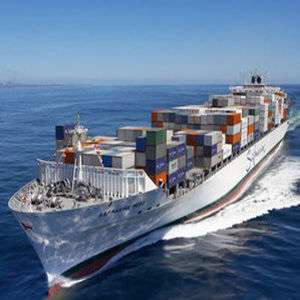 Professional and Humanized Chinese Local Shipping Forwarder to Hamburg, German pictures & photos
