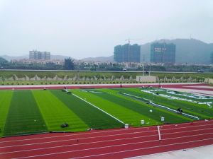 Synthetic Turf, High UV-Resistance 20mm-50mm Artificial Grass pictures & photos
