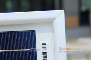 Q-Cells Poly Solar Panel / Product Energy System 320W-325W pictures & photos