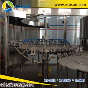 4000bph 600ml Pet Bottle Orange Juice Hot Filling Machine pictures & photos