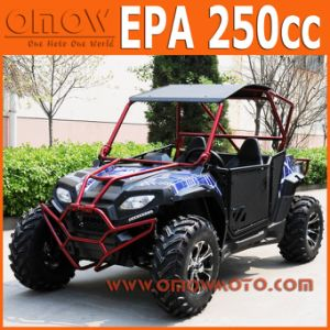 EPA 400cc Automatic Shaft Drive UTV pictures & photos