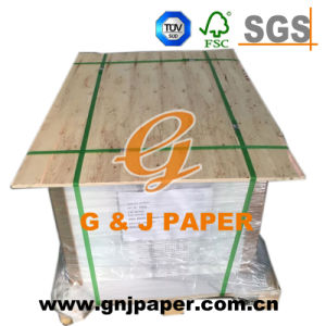 Excellent Quality 60GSM Coated Translucent Paper in Carton Packing pictures & photos