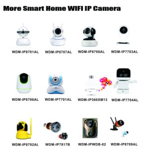 Security Home Smart Wdm Home/Business IP Mini WiFi Camera pictures & photos