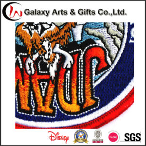 Personalized Iron on Custom Embroidery Logo Patch pictures & photos
