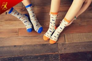 Cotton Couple Socks for Men and Women pictures & photos