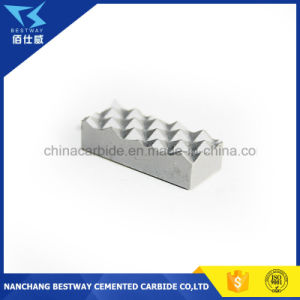 Carbide Jaw Gripper for Hydraulic Foot Clamps pictures & photos