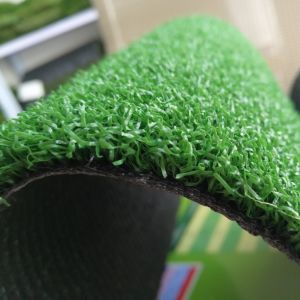 13mm Height Artificial Golf Grass with Non Directional Ball Rolling pictures & photos