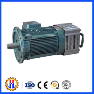 Construction Hoist Motor Used for Hoist, Reducer, Electric Motor pictures & photos