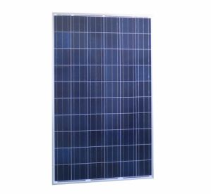 A Grade PV Panels From Sungold Poly Solar Panel 250W pictures & photos