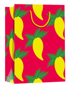 Reycle Gift Paper Bag for Carried Fruits pictures & photos