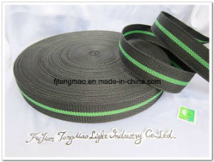 600d Black Green PP Webbing for School Bags pictures & photos
