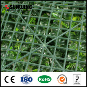 Good Quality Green UV Rated Artificial Boxwood Screen Sheets pictures & photos