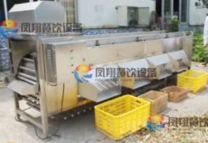 Auotmatic Orange Pomegranate Fruit and Vegetable Sorting Grading Machine pictures & photos