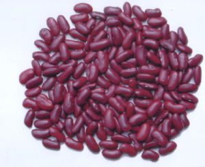 Dark Red Kidney Bean pictures & photos