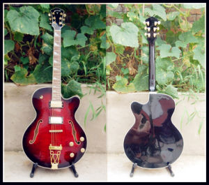 Jazz Guitar, High Quality with Plywood (YZ-108DR)