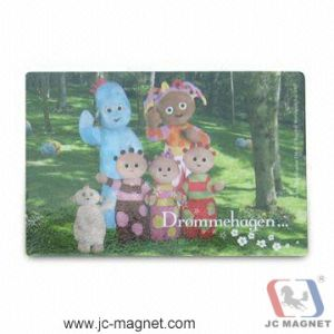 PVC Fridge Magnet pictures & photos