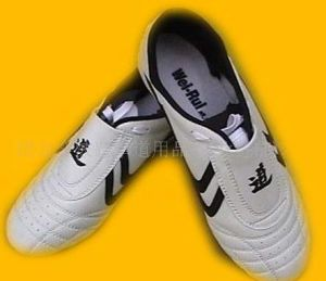 Taekwondo Shoes (907001)