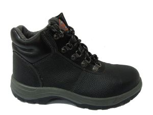 Safety Shoe (OT-S6831)